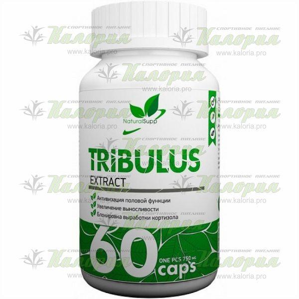 Tribulus Extract 750 mg - 60 caps
